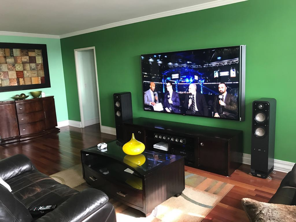 mounted TV Puls