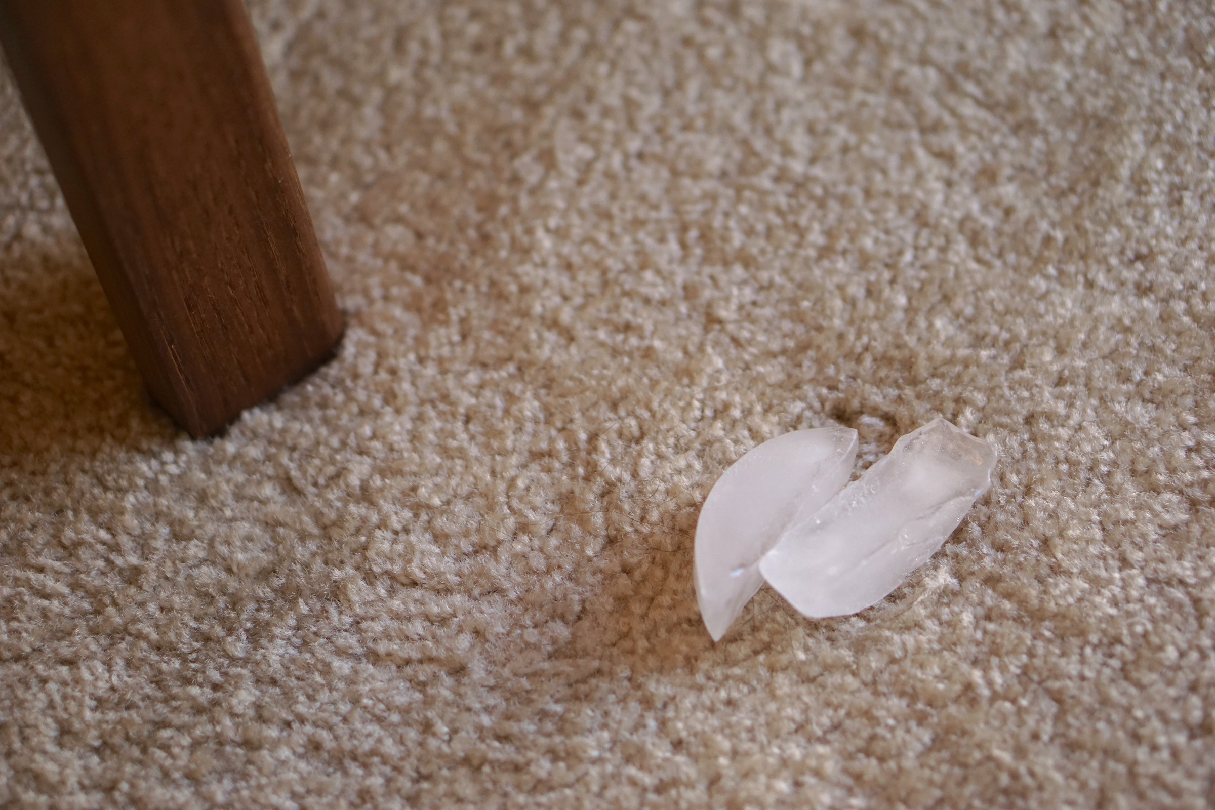 Another one of our carpet care tips is to treat dented sections of carpet with ice.