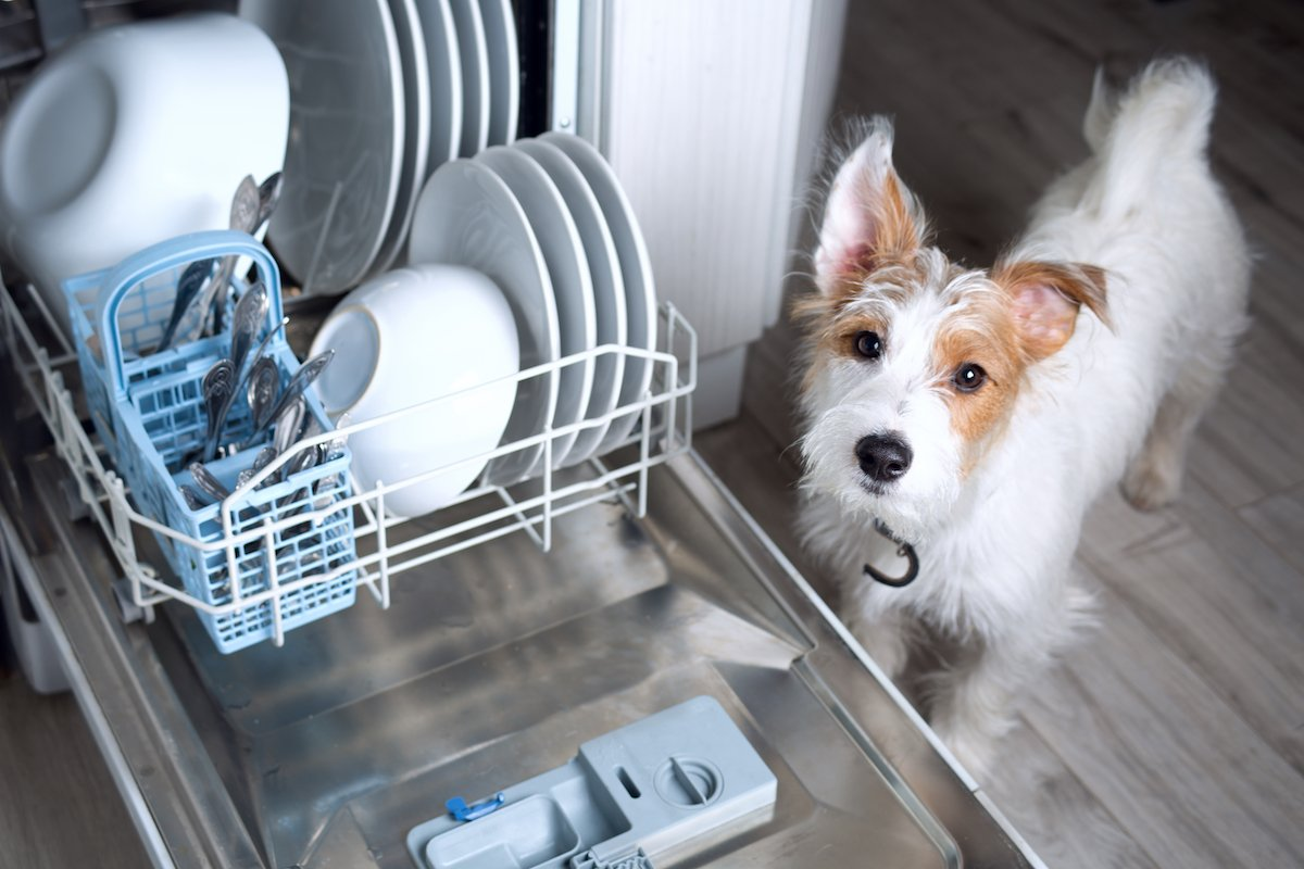 LG repair near me: who to call if you have these dishwasher issues
