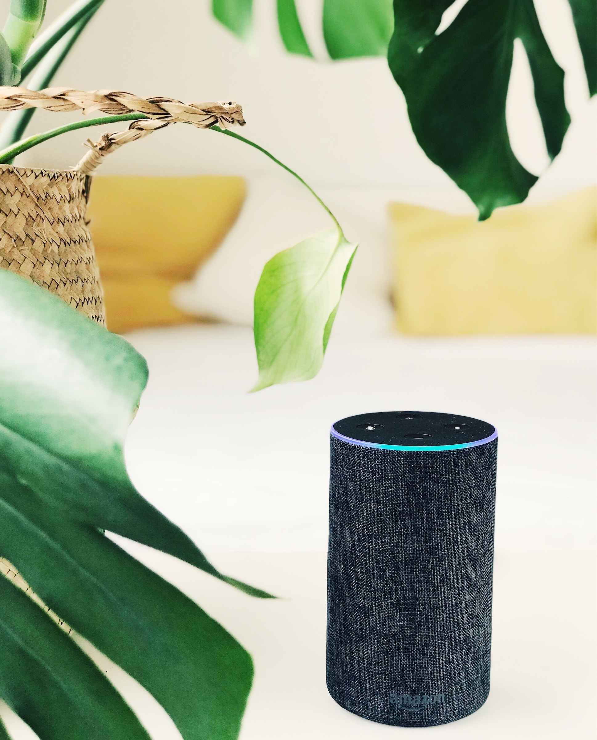 Amazon Alexa comes programmed with fun party games!