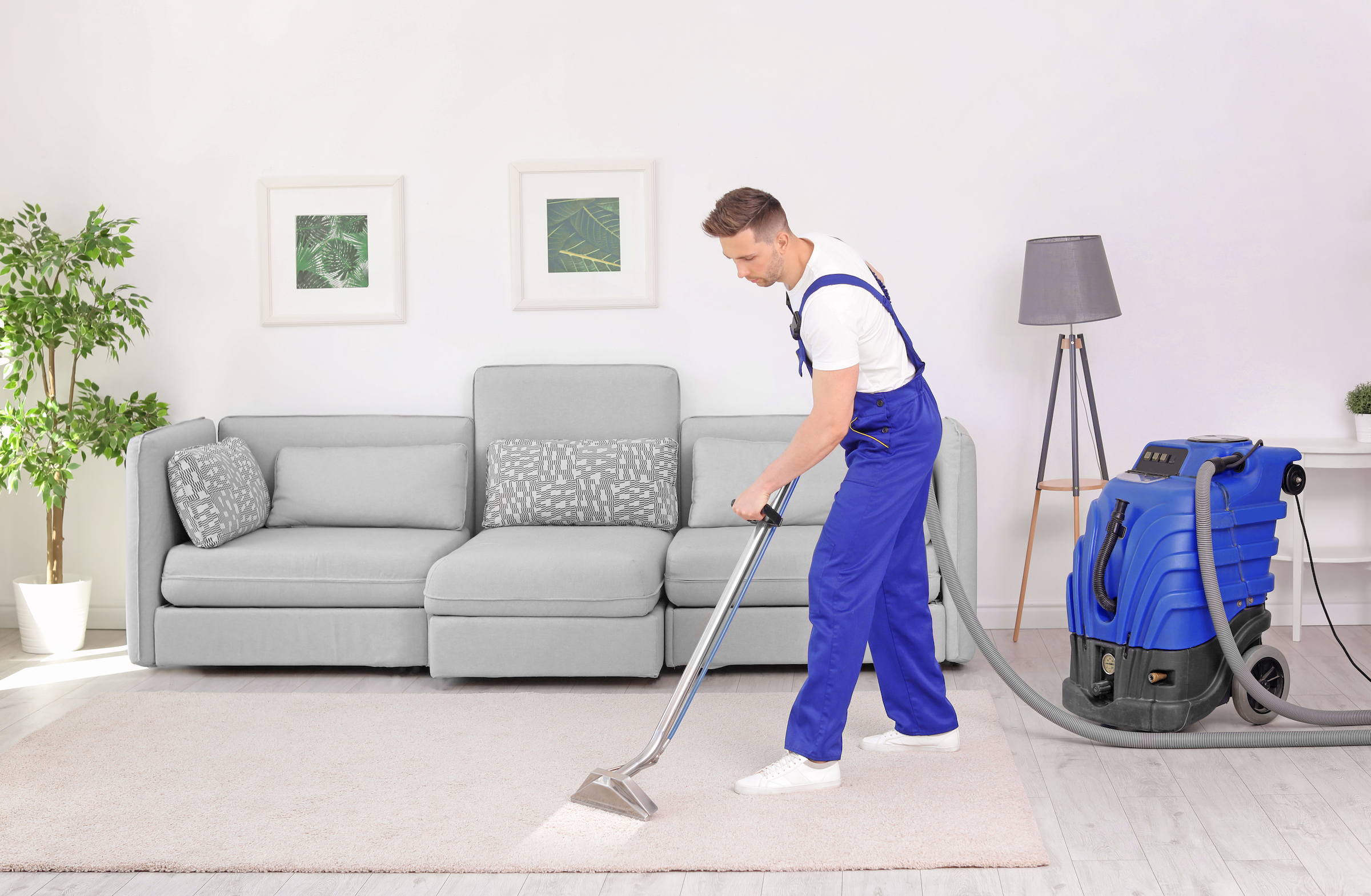 How to clean a rug: find professional cleaners near you.