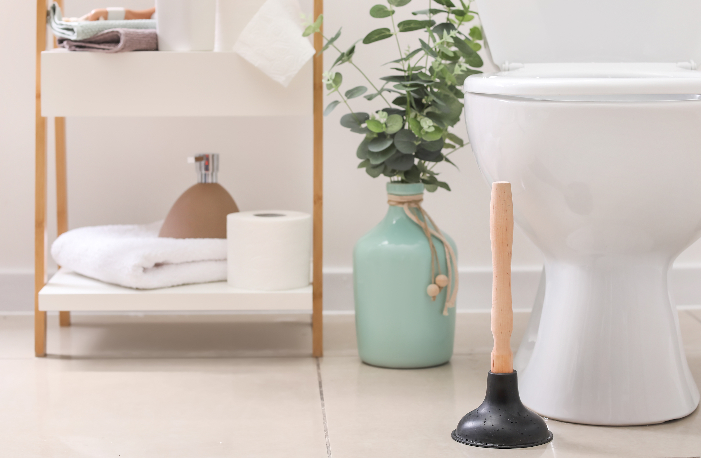 Plumbing tip for new homeowners 3: know your way around a plunger