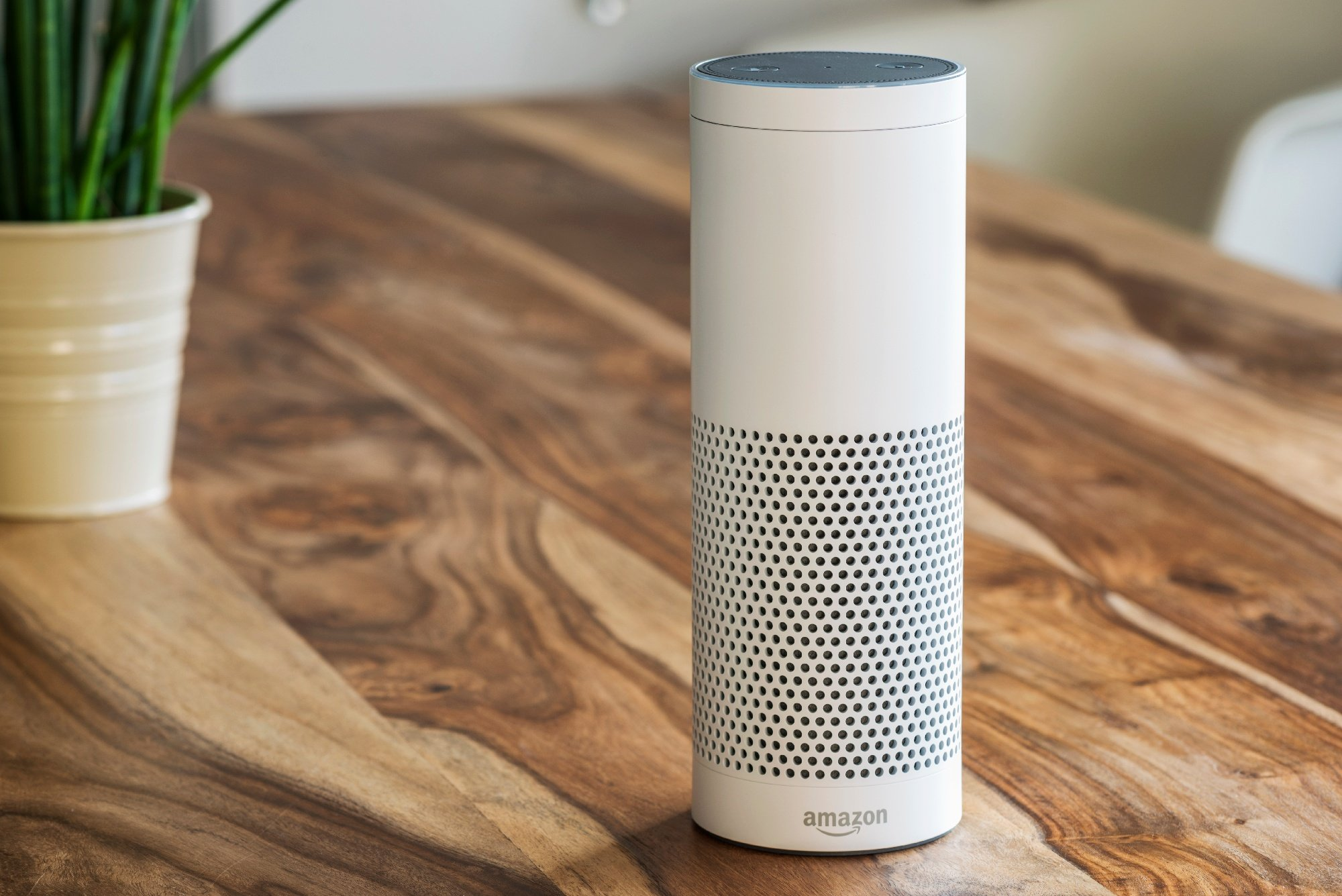 Alexa enabled speaker