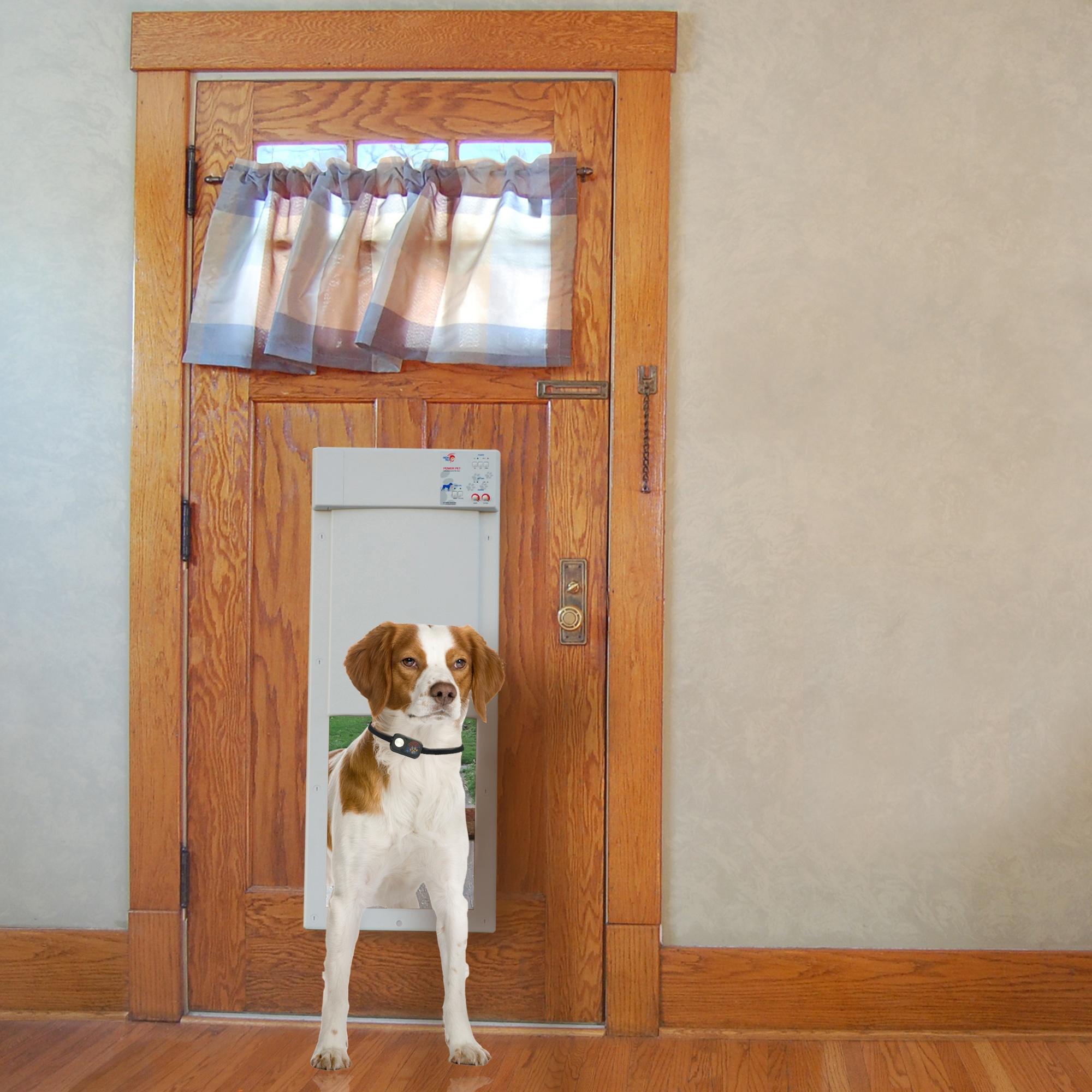 smart pet door-1