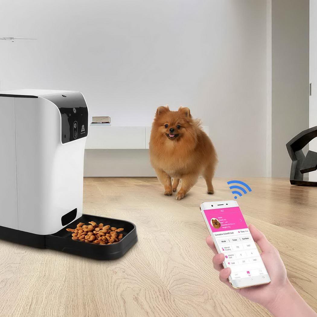 Clearance Smart Pet Feeder